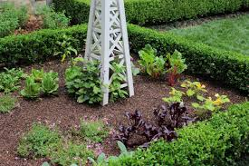 Edible Garden Ideas Small Vegetable Garden Plans With Flowers Hgtv