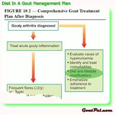 diet gout management plan goutpal gout facts