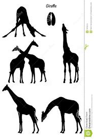 big 5 solhouette google search cutting u0026 stencils diere