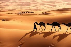 learn about the sahara desert