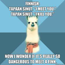 Finnish Language Meme - finnish tapaan sinut i meet you tapan sinut i kill you now