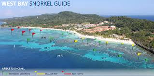 Map Of Puerto Rico Beaches by Snorkeling In The West Bay Roatan Honduras Upon Arriving