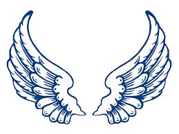 best hd wings vector set angel bird icon silhouette illustration