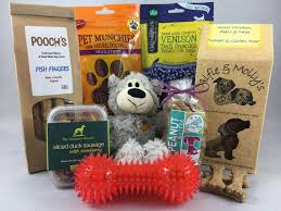 pawfect presents for dogs the pawfect present