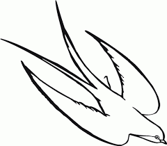 simple drawing of birds how to draw a simple bird step step birds