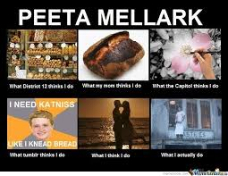 Hunger Games Memes Funny - the hunger games peeta melark by seanholmes meme center