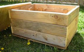 composting worm bins tips tricks and advice from the experts