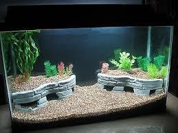 aquarium decorations dramatic aquascapes diy aquarium decore stone terraces african