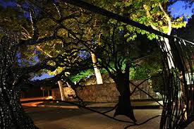 affordable outdoor landscape lighting for homeowners associations