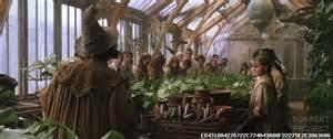 harry potter et la chambre des secrets torrent harry potter et la chambre des secrets torrent roytk