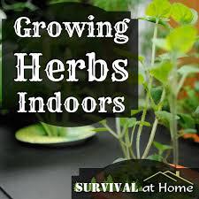 47 best garden indoors images on pinterest gardening