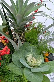 Pineapple Decoration Ideas Unique Plant Centerpiece Ideas For Thanksgiving