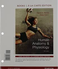 Anatomy And Physiology Songs Human Anatomy U0026 Physiology Amazon Co Uk Elaine Nicpon Marieb