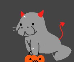 Manatee Halloween Costume Halloween Themed Manatees