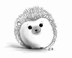 erizo a lapiz sin color brisa sketchings pinterest hedgehog