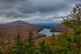 Vermont forest images Photographing vermont in the fall groton state forest area jpg