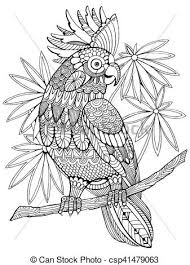 clip art vector cockatoo parrot coloring book adults vector