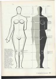 Anatomy Of Human Body Sketches 80 Best Drawing Anatomy Images On Pinterest Drawing Human