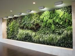 indoor wall herb garden 17 best 1000 ideas about herb wall on