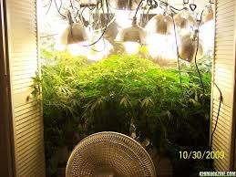250 watt hps grow light watt grow light 600w hps grow light watt grow light 600 watt