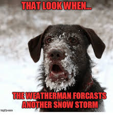 Winter Storm Meme - that look when the weatherman forcasts another snow storm inngi