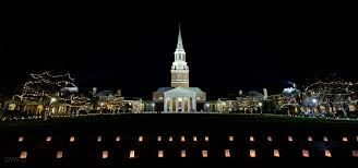 from the forest wake forest university
