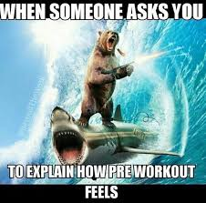 I Work Out Meme - funny pre workout memes muscular ca