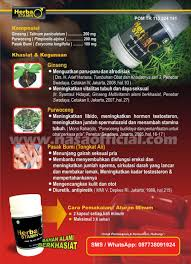 herbastamin suplemen vitalitas pria dengan bahan herbal berkualitas