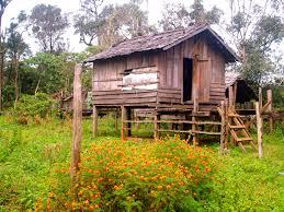 wooden log cabin free images building hut shack cottage agriculture wooden