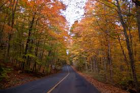 11 of the most scenic country roads to drive in illinois
