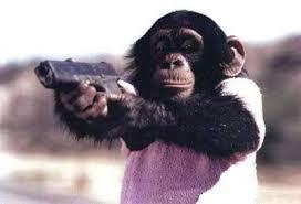 Monkey Meme Generator - monkey gun meme generator imgflip