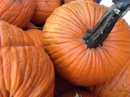 halloween events tucson az