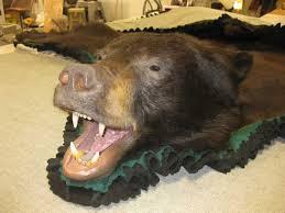 Taxidermy Bear Rug Montana Wildlife Taxidermy U0026 Wholesale Rugs