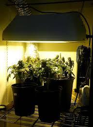 400 Watt Hps Grow Light Namaste Indoor Gardens Grow Number 6