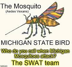 Mosquito Meme - the michigan state bird the mosquito imgflip