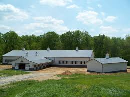 Horse Barn Designs We Design And Build Barns Precise Buildings