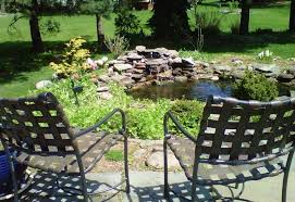 water garden goldfish and koi pond cleaning national pond service