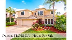 pending sale odessa florida houses for sale 12818 eagles entry