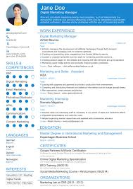 Sales And Marketing Manager Resume Examples by 21st Century Résumé Examples And Samples How To Create One