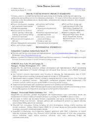 Consulting Resumes Examples Independent Consultant Resume Resume For Your Job Application