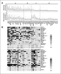 epigenetic silencing mediated through activated pi3k akt signaling