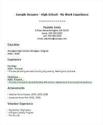 sample resume high student no work experience sample