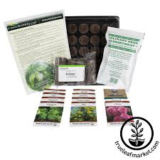 indoor herb garden 5 indoor garden kits for any herb lover indoor