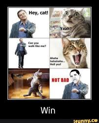 Hell Yes Meme - ahahaha hell yes terriblefacebookmemes