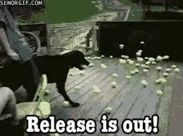 Release The Kraken Meme - release the kraken meme gifs tenor