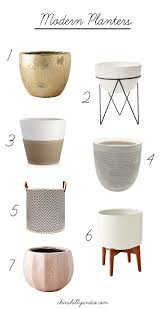 best indoor planters for minimalists chinchilly u0026 co