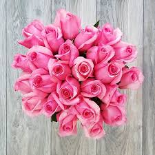 hot pink roses send online 25 hot pink roses bouquet in miami florida roses