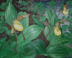 paintings of flowers the art of john p carney