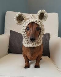 Mini Dachshund Halloween Costumes Furry Friend Warm Cozy Cute Bear Hood