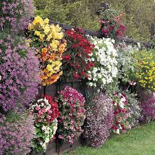 Cut Flower Garden by 10 Container Garden Ideas That Are Cheap Or Free